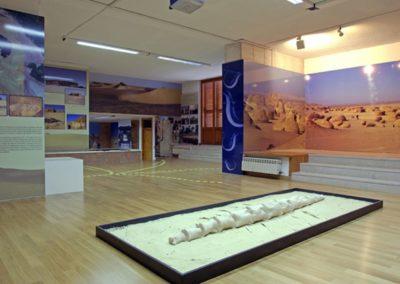 allestimento museo cianetti41