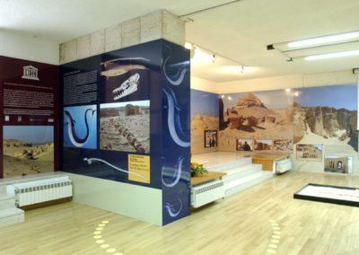 allestimento museo cianetti42